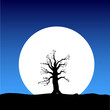tree on the moon