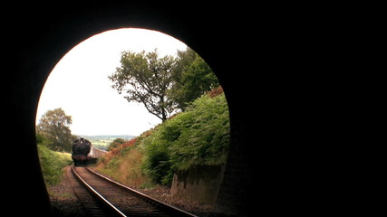 Steam train entering tunnel