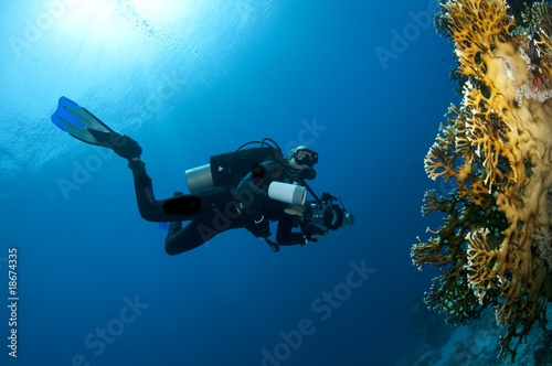 Diver with camera