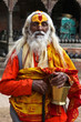Indian sadhu