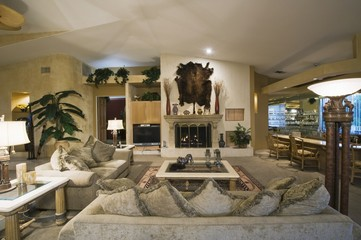 palm Springs living room with wall-mounted animal pelt