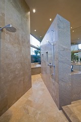 Walk-in shower of Palm Springs home