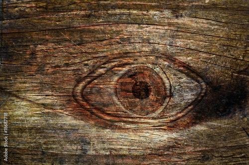 Fototapeten,auge,baum,eye,phantasie