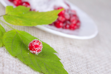 Cowberry sprinkled with sugar on green sheet