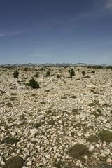 Rock Desert (Croatia Island Pag)