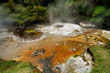 Hot stream with mineral sediments, Waimangu, NZ