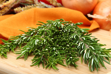 Rosemary in Kitchen