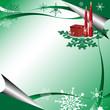 Green winter greeting