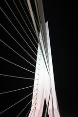 Detail Erasmusbridge by night in the Netherlands