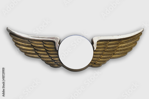 Golden wings, on white background. - 18729919