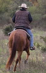 cavalier de dos dans la nature