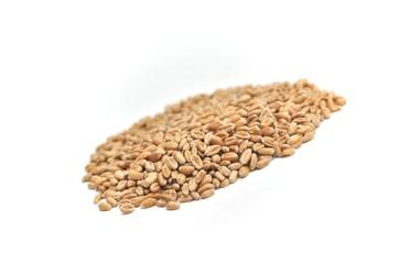 blé isolé