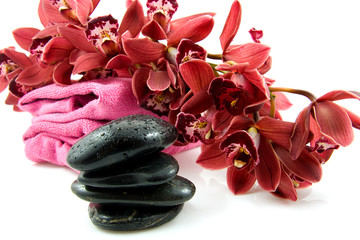 spa stones with red orchid over white background