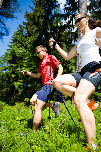 power nordic walking