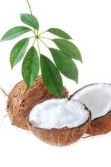 broken ripe coconut