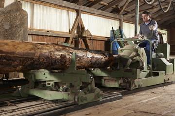 worker at sawmill