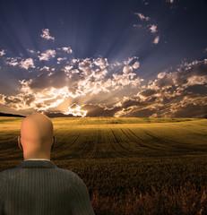 Businessman Views Beautiful Landscape