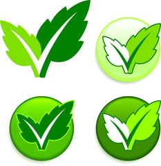 green check mark design