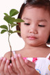 little girl holding a young tree