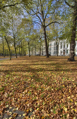 The Hague in Autumn