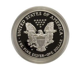 Reverse of 2001w Silver Eagle Proof