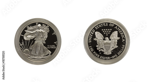 Close-up of 2001w Silver eagle, both sides