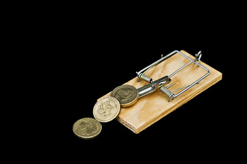coins on mousetrap