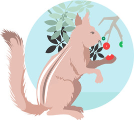 Illustration of squirrel eating berry from plant