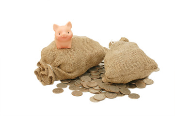Toy pig with bags of money isolated