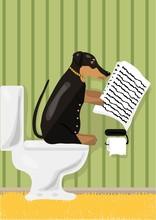 Dog liest Nachrichten in Toilette, Vektor-Illustration