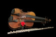 Viola, violino, flauto traverso e rosa 2