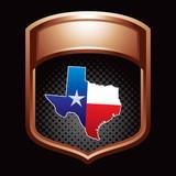 texas lonestar state bronze display poster