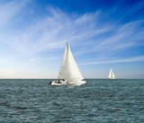 sail yacht regatta in a sea poster