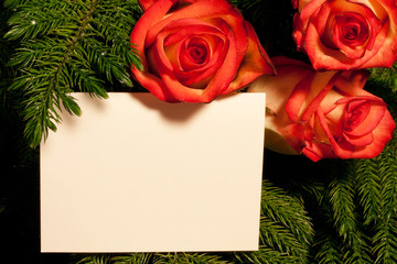 Roses and Card in Tree