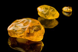 Sixty Million Year Old Baltic Amber poster