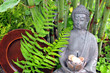 Wellness Gong Buddha