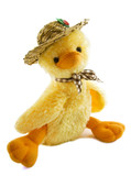Sweet fuzzy duckling poster