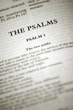 psalms bible verses from chapter 1 poster