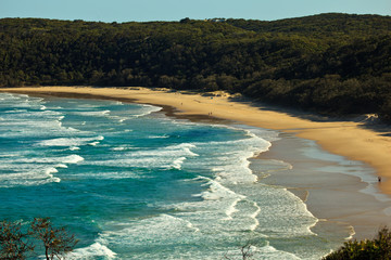Beach at Alexandria Bay, Noosa Heads, Queensland, Australia