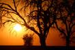 Coucher de soleil africain
