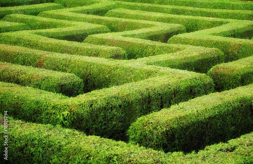 labyrinth stockfotos und lizenzfreie bilder auf bild 18915794. Black Bedroom Furniture Sets. Home Design Ideas