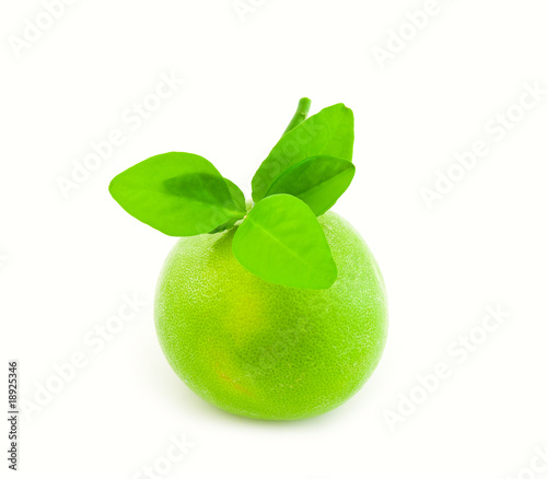 Green Sweetie with leaves on a white background