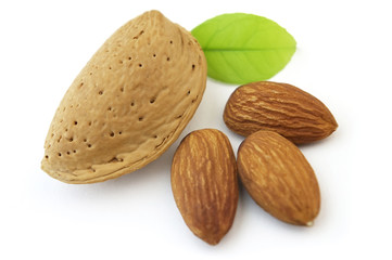 Almond with kernel