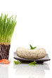 Wheatgrass and bar of soap