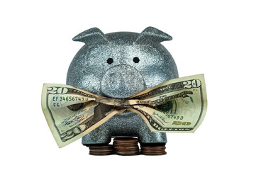 Piggy Bank Eating 2
