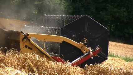 Harvest time in the countryside