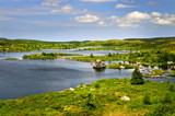Beautiful lake shore in Newfoundland poster