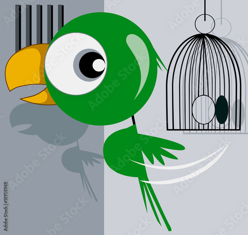 Illustration of parrot escaping from a cage