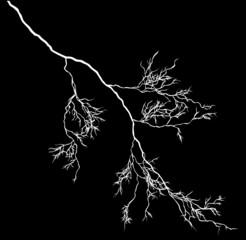 single white lightning