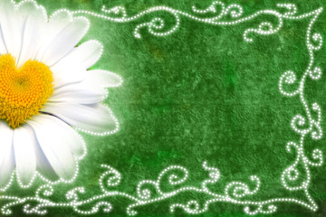 tarjeta margarita corazon fondo verde